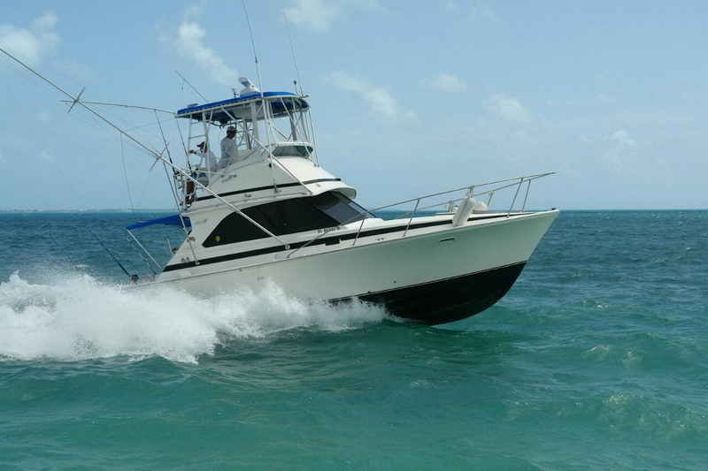 Deep Fishing Charter